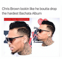 That bachata album bout to be fire 😭😭: Chris Brown lookin like he boutta drop  the hardest Bachata Albumm  CIVA THE TERRIBLE That bachata album bout to be fire 😭😭