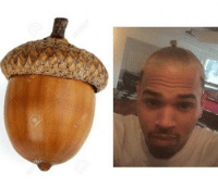 Chris Brown trying to be an acorn so bad...: Chris Brown trying to be an acorn so bad...