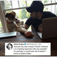 Chris Evans, Memes, and Precious: Chris Evans@ChrisEvans 6m  'Excuse me, are u busy? Could I interest  u in chasing squirrels with me outside?  Or perhaps u could toss the frisbee?  have no plans today' LOOK AT THIS PRECIOUS MAN ° 《cred to @c.omicsworld 》