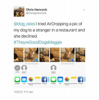 Animals, Cute, and Cute Animals: Chris Hancock  @chrisghancock  @dog_rates I tried AirDropping a pic of  my dog to a stranger in a restaurant and  she declined  #TheyreGoodDogsMaggie  0:14  Tap to share with AirDrop  Tap to share with ArDrop  Maggies  Declined  ennierMagges  Message  Message M  icoud Photo Add t0 Notes Facebook  Mal  Sharing  Sharing  17/2/17, 1:17 pm i feel like this account has just become me asking for pet photos (keep them coming btw, i have seen many many cute aniMals 😭👌)
