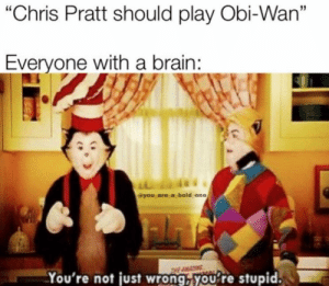 "Chris Pratt, Brain, and Okay: ""Chris Pratt should play Obi-Wan""  Everyone with a brain:  VIL  @you are a bold one  THE AMA  You're not just wrong, you're stupid. That's not okay."
