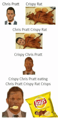 Chris: Chris PrattCrispy Rat  Chris Pratt Crispy Rat  Crispy Chris Pratt  Crispy Chris Pratt eating  Chris Pratt Crispy Rat Crisps  Rat  Pratt CrispyR