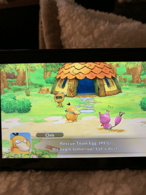 Posted a mystery dungeon screenshot earlier this week on a post about testing names out. Thought I post a follow up letting y'all know the name is Autumn 🍂: Chris  Rescue Team Egg.JPEG!  We begin tomorrow! Let's do it! Posted a mystery dungeon screenshot earlier this week on a post about testing names out. Thought I post a follow up letting y'all know the name is Autumn 🍂
