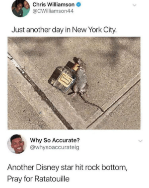 Dank, Disney, and Memes: Chris Williamson  @CWilliamson44  Just another day in New York City  Why So Accurate?  @whysoaccurateig  Another Disney star hit rock bottom,  Pray for Ratatouille Lindsay Lohan 101 by VinWendall MORE MEMES
