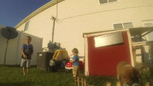 "Saw, Tumblr, and GoPro: chriscappuccino: thebestoftumbling:  saint bernard puppy chasing a gopro  When I first saw GoPros in the stores, I thought, ""What the hell would anyone need that for?"" Now I see."