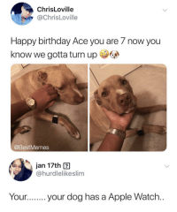 Turn up (via /r/BlackPeopleTwitter): ChrisLoville  @ChrisLoville  Happy birthday Ace you are 7 now you  know we gotta turn up  @BestMemes  jan 17th ?  @hurdlelikeslim  Your.your dog has a Apple Watch Turn up (via /r/BlackPeopleTwitter)