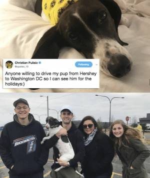 People can be awesome sometimes.: Christian Pulisic  @cpulisic 10  Following  Anyone willing to drive my pup from Hershey  to Washington DC so I can see him for the  holidays:)  Beke  BUCKWALTER People can be awesome sometimes.