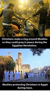 Memes, Egypt, and Egyptian: Christians make a ring around Muslims  so they could pray in peace during the  Egyptian Revolution.  HEMETAPICTUREC0M  Muslims protecting Christians in Egypt  during mass. http://t.co/2O8cx3YEkC