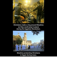 Memes, Egypt, and Egyptian: Christians make a ring around Muslims  so they could pray in peace  during the Egyptian Revolution.  Muslims protecting Christians  in Egypt during mass. Never Stop Retweeting.......