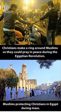 Memes, Egypt, and Egyptian: Christians make a ring around Muslims  so they could pray in peace during the  Egyptian Revolution.  HEMETAPICTUREC0M  Muslims protecting Christians in Egypt  during mass. http://t.co/jbeVWOAnDB