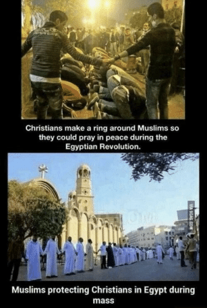 Memes, Tumblr, and Blog: Christians make a ring around Muslims so  they could pray in peace during the  Egyptian Revolution.  Muslims protecting Christians in Egypt during  mass positive-memes:  This is how people from different religions should treat each other