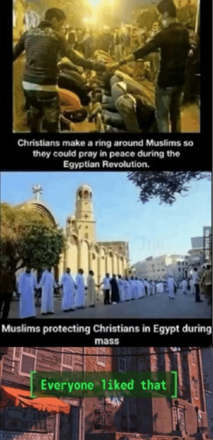 Everybody like that by yoshigarcia3 MORE MEMES: Christians make a ring around Muslims so  they could pray in peace during the  Egyptian Revolution.  Muslims protecting Christians in Egypt during  mass  Everyone liked that  SGAG Everybody like that by yoshigarcia3 MORE MEMES