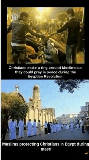 Bless these legends!: Christians make a ring around Muslims so  they could pray in peace during the  Egyptian Revolution.  Muslims protecting Christians in Egypt during  mass  VA OGAG COM Bless these legends!