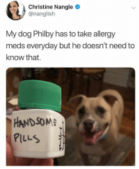 Af, Memes, and 🤖: Christine Nangle  @nanglish  My dog Philby has to take allergy  meds everyday but he doesn't need to  know that.  HANDSOM  PILLS Philby doesn't need handsome pills he's already handsome AF. But yes this is great. Tw nanglish