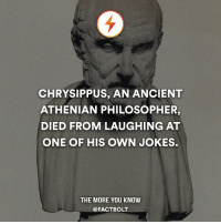 Memes, The More You Know, and 🤖: CHRYSIPPUS, AN ANCIENT  ATHENIAN PHILOSOPHER,  DIED FROM LAUGHING AT  ONE OF HIS OWN JOKES.  THE MORE YOU KNOW  @FACT BOLT That joke must've been funny af lmao