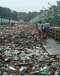 A thick layer of plastic waste covers Kalady Bridge in Kerala, as water recedes after deadly floods in the Indian state. Nearly 400 people died and more than a million people have been displaced by the disaster. Tap the link in our bio ⬆️ to read more about the environmental factors that made the exceptionally heavy rain so deadly. 📷: Green Dream Foundation kerala environment india pollution plasticfree bbcnews: Cht  AN  Chungath A thick layer of plastic waste covers Kalady Bridge in Kerala, as water recedes after deadly floods in the Indian state. Nearly 400 people died and more than a million people have been displaced by the disaster. Tap the link in our bio ⬆️ to read more about the environmental factors that made the exceptionally heavy rain so deadly. 📷: Green Dream Foundation kerala environment india pollution plasticfree bbcnews
