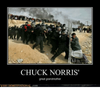 very demotivational: CHUCK NORRIS  great grandmother  VERY DEMOTIVATIONAL.com