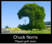 Golf: Chuck Norris  Played golf once..