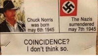 "<p>The real reason hitler killed himself is because he found out Chuck Norris was a Jew via /r/memes <a href=""http://ift.tt/2h8TnLc"">http://ift.tt/2h8TnLc</a></p>: Chuck Norris  was born  may 6th 1945  The Nazis  surrendered  may 7th 1945  COINCIDENCE?  I don't think so. <p>The real reason hitler killed himself is because he found out Chuck Norris was a Jew via /r/memes <a href=""http://ift.tt/2h8TnLc"">http://ift.tt/2h8TnLc</a></p>"
