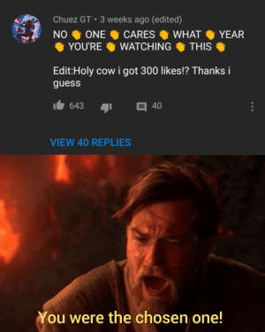 You became what you swore to destroy: Chuez GT 3 weeks ago (edited)  NO  ONE  CARES  WHAT  YEAR  YOU'RE  WATCHING  THIS  Edit:Holy cow i got 300 likes!? Thanks i  guess  643  目 40  VIEW 40 REPLIES  You were the chosen one! You became what you swore to destroy