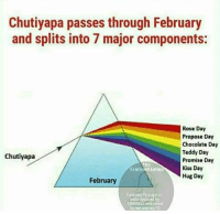 Memes, 🤖, and Unesco: Chutiyapa passes through February  and splits into 7 major components:  Rose Day  Propose Day  Chocolate Day  Teddy Day  chutiyapa  Promise Day  Kiss Day  N Hug Day  February  UNESCO and voted  by me and Tag people who gonna suffer 😂😂
