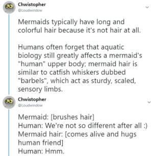 "Alive, Catfished, and Hungry: chwistopher  @Loudwindow  Mermaids typically have long and  colorful hair because it's not hair at all.  Humans often forget that aquatic  biology still greatly affects a mermaid's  ""human"" upper body; mermaid hair is  similar to catfish whiskers dubbed  ""barbels"", which act as sturdy, scaled,  sensory limbs.   Chwistopher  @Loudwindow  Mermaid: [brushes hair]  Human: We're not so different after all:)  Mermaid hair: [comes alive and hugs  human friend]  Human: Hmm ninjanaomi:  otherwindow:  otherwindow:  Iconic seafarer beards became a trend to scare away pesky mermaids. Mermaid, seeing a bald pirate: Zero threat…!Mermaid, seeing a hairy, bearded pirate: If I get too close their face tentacles will eat me…!    Most mermaids only grow short beards as not to scare baby mermaids (longer beards look like the tentacled mouths of hungry squids and octopuses). Pirates use this innate fear to their advantage to protect themselves from mermaids, hence the iconic beards and hat:   I like how this is presented as factual information"