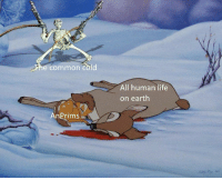 Can I Get Uhhh: ci  he common cold  All human life  on earth  AnPrims