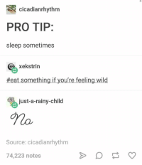 Wild, Pro, and Sleep: cicadianrhythm  PRO TIP:  sleep sometimes  xekstrin  #eat something if you're feeling wild  just-a-rainy-child  Source: cicadianrhythm  74,223 notes