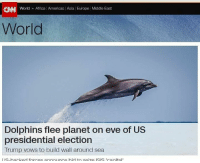 Africa, America, and Isis: CINNI World  Africa Americas Asia Europe Middle East  World  Dolphins flee planet on eve of US  presidential election  Trump vows to build wall around sea  I IS-backed forces annon ince bid to seize ISIS Tranital So long, and thanks for all the fish.