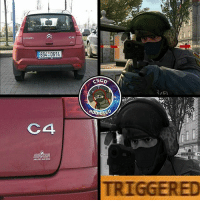 Meme, Memes, and Sorry: CITROEN  6S4 0614  C4  C4  ESGO  ADDICTED  IFI  iai i  ii i Triggered. @csgo.addicted. just want to apologize about this meme. The guy steals so many memes and water marks its unbelievable. Sorry guys. - Follow my second page @overwatchdreams -------------------- 💓Reached 10k in 6 months and 1 day of having the account. 19-2-2017💓 💲Trade link in description💲 😥Not playing with fans yet😥 -------------------- 👏🏽If you really want to trade with me please DM me about it as i don't like random trades👏🏽 -------------------- Subscribe to my YouTube. 🎶Nightcore Blessing 🎶 -------------------- 😈Not wanting partners under 5k. Dont ask. Begging for skins means block. Dont do shoutouts😈 -------------------- 💰Top donators💰 @csgo.fox £670😍😱💞 Thederpcharley £434 😱😘 @Cs.c0m £190 😍😊 Rico420nk £48 ☺😘😍 @bot_jakey £36😍😘😏 -------------------- 😊Partners😊 @german.lauch_csgo @csgo.Duck 😥Inactive partners will be taken off. Or if you have to many partners😥 ------------------------ ⛔Ignore the hashtags⛔ csgo counterstrike terrorist counterterrorist knifes knife skins memes memelord girlgamer awp giveaways roadto30000 bomb shooter gamer games steam csgomemes zeus csmemes unboxing 360noscope meme csgodreams teamdreams