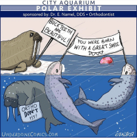 tbt to when the marine mammals were not happy with the new sponsor at their aquarium exhibit. Tag someone who's always exhibiting their natural beauty! 😁 ️⃣ walrus narwhal dentist orthodontist aquarium marinelife underwater animals nature comic webcomic dailycomic comicstrip outdoors zoo teeth pinnipeds protest sponsorship advertisement braceface tusk fun pool whales arctic wildanimals loveyourself bornthisway: CITY AQUARIUM  sponsored by: Dr. E. Name!, DDS-Orthodontist  YoU WeRE BORN  HITH A GREAT SMILE  OONT  IST  UNDERDONECOMICS COM tbt to when the marine mammals were not happy with the new sponsor at their aquarium exhibit. Tag someone who's always exhibiting their natural beauty! 😁 ️⃣ walrus narwhal dentist orthodontist aquarium marinelife underwater animals nature comic webcomic dailycomic comicstrip outdoors zoo teeth pinnipeds protest sponsorship advertisement braceface tusk fun pool whales arctic wildanimals loveyourself bornthisway