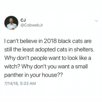 Cats, Memes, and Black: CJ  CobwebJr  l can't believe in 2018 black cats are  still the least adopted cats in shelters  Why don't people want to look like a  witch? Why don't you want a small  panther in your house??  7/14/18, 5:33 AM Need a small panther