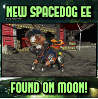 """A new Spacedog easter egg has been found on Moon in Zombies Chronicles!🔥 Creds to """"Glitching Queen"""" on YouTube, check out her tutorial!👍- 👥tag a friend👥 ❤️5000 likes?❤️ follow🤖 ⬆️check out the link in my bio⬆️ 🔔turn on post notifications🔔 CoD BattleField1 BlackOps3 WorldWar2 Treyarch MWR callofduty InfiniteWarfare MWRemastered ZombiesChronicles Zombies CallofDutyIW InfinityWard PS4 PlayStation WWII xbox XboxOne BF1 BO3 CoD4 Gamer SHGames ModernWarfare Activision Sledgehammer CODWWII Game Gaming CoDReturns: CJESPERGRAN  SPACEDOGEE  FOUND ON MOON! A new Spacedog easter egg has been found on Moon in Zombies Chronicles!🔥 Creds to """"Glitching Queen"""" on YouTube, check out her tutorial!👍- 👥tag a friend👥 ❤️5000 likes?❤️ follow🤖 ⬆️check out the link in my bio⬆️ 🔔turn on post notifications🔔 CoD BattleField1 BlackOps3 WorldWar2 Treyarch MWR callofduty InfiniteWarfare MWRemastered ZombiesChronicles Zombies CallofDutyIW InfinityWard PS4 PlayStation WWII xbox XboxOne BF1 BO3 CoD4 Gamer SHGames ModernWarfare Activision Sledgehammer CODWWII Game Gaming CoDReturns"""