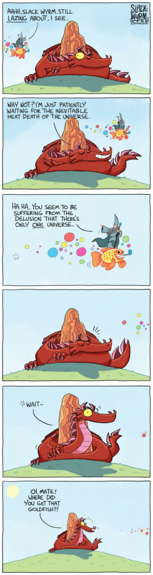 Goldfish, Omg, and Tumblr: CK  AHHH, SLACk WYRM.STILL  LAZING ABOUT, I  SEE  WHY NOT?IM JUST PATIENTLY  WAITING FOR THE INEVITABLE  HEAT DEATH OF THE UNIVERSE.  HA HA. Tou SEEM TO BE  SUFFERING FROM THE  DELUSION THAT THERES  ONLY ONE UNIVERSE.  WAIT  Oi, MATE!  WHERE DID  You GET THAT  GOLDFISH?! omg-images:  Nothing to ennui here