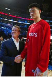 """<p>Arnold Schwarzenegger meeting Yao Ming.<br/><a href=""""http://daily-meme.tumblr.com""""><span style=""""color: #0000cd;""""><a href=""""http://daily-meme.tumblr.com/"""">http://daily-meme.tumblr.com/</a></span></a></p>: CKETS  AX <p>Arnold Schwarzenegger meeting Yao Ming.<br/><a href=""""http://daily-meme.tumblr.com""""><span style=""""color: #0000cd;""""><a href=""""http://daily-meme.tumblr.com/"""">http://daily-meme.tumblr.com/</a></span></a></p>"""