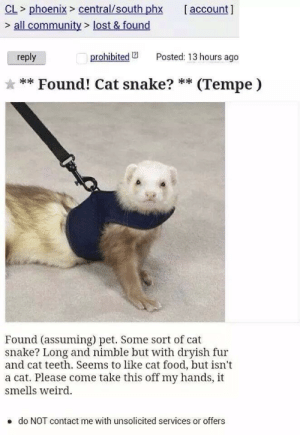 Prohibited: CL> phoenix>central/south phx account ]  > all community> lost & found  reply  prohibited 2  Posted: 13 hours ago  * ** Found! Cat snake? ** (Tempe)  Found (assuming) pet. Some sort of cat  snake? Long and nimble but with dryish fur  and cat teeth. Seems to like cat food, but isn't  a cat. Please come take this off my hands, it  smells weird.  e do NOT contact me with unsolicited services or offers