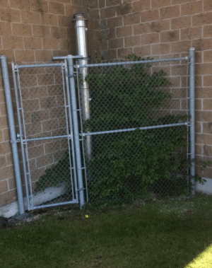 Crime, Jail, and Target: claimed-clams: fartgallery:  what crime did this tree commit to be put in tree jail  Treeson
