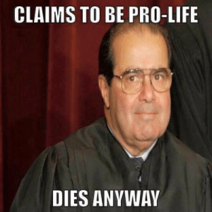 Life, Tumblr, and Blog: CLAIMS TO BE PRO-LIFE  DIES ANYWAY beyonslayed:  OH MY GOOOOOOOOOOOOD   This is one of those posts where I say damn I wish I thought of that 😂