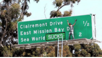 Star @steveo dancing on a sign protesting Sea World 😂: Claire mont Drive  D  East Mission Bay 1/2  Sea World SUCK  2 Star @steveo dancing on a sign protesting Sea World 😂