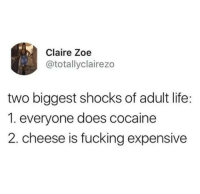 Fucking, Life, and Cocaine: Claire Zoe  @totallyclairezo  two biggest shocks of adult life:  1. everyone does cocaine  2. cheese is fucking expensive
