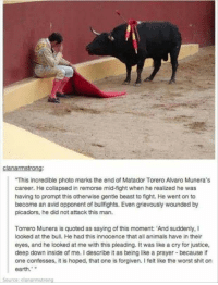 "Animals, Shit, and The Worst: clanarmstrong:  This incredible photo marks the end of Matador Torero Alvaro Munera's  career. He collapsed in remorse mid-fight when he realized he was  having to prompt this otherwise gentle beast to fight. He went on to  become an avid opponent of bulfights. Even grievously wounded by  picadors, he did not attack this man.  Torrero Munera is quoted as saying of this moment: 'And suddenly, I  looked at the bull. He had this innocence that all animals have in their  eyes, and he looked at me with this pleading. It was like a cry for justice,  deep down inside of me. I describe it as being like a prayer because if  one confesses, it is hoped, that one is forgiven. I felt like the worst shit on  earth.""  Source: clanarmstrong <p>Powerful. Humans can always improve.</p>"