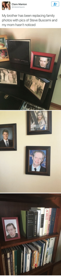 Steve Buscemi: Clare Manion  @claremaura  My brother has been replacing family  photos with pics of Steve Buscemi and  my mom hasn't noticed   003