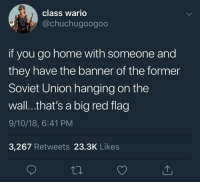 Wario, Hitler, and Home: class wario  @chuchugoogoo  if you go home with someone and  they have the banner of the former  Soviet Union hanging on the  wall...that's a big red flag  9/10/18, 6:41 PM  3,267 Retweets 23.3K Like:s Hitler comments on the October Revolution. [Alsace, 1917]