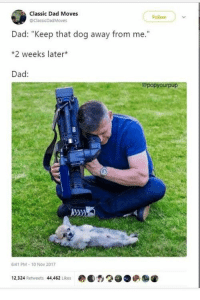 """Dad, Tumblr, and Blog: Classic Dad Moves  ollon  ClassicDad Moves  Dad: """"Keep that dog away from me.""""  *2 weeks later*  Dad:  @popyourpup  41 PM- 10 Nov 2017  12,324 Retweets 44,462 Likes  ●●,2●●俨 awesomacious:  No man can resist a doggo"""