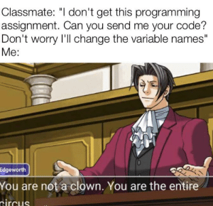 "There's always that one guy: Classmate: ""I don't get this programming  assignment. Can you send me your code?  Don't worry I'll change the variable names""  Мe:  Edgeworth  You are not a clown. You are the entire  tircus There's always that one guy"