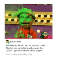 classof 1999  Somebody told me that the reason Cousin  Skeeter was cancelled was because they  couldn't get the slime out of the puppet  Source: zigazig-ah-blog-blog Cousin Skeeter?