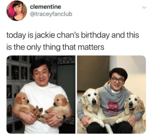 Birthday, Memes, and Today: clementine  @traceyfanclub  today is jackie chan's birthday and this  is the only thing that matters 😁