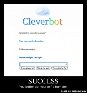 Omg, Tumblr, and Hamster: Cleverbot  What is the recipe for success?  Two eggs and a hamster.  I think you're right.  Damn straight I'm right.  Think About It!  Think For Me!  Thoughts So Far  SUCCESS  You better get yourself a hamster.  TASTE OF AWESOME.COM Successhttp://omg-humor.tumblr.com