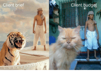 Client brief  Client budget Expectations VS Reality