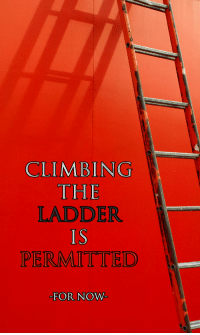 Climbing, Reddit, and Com: CLIMBING  THE  LADDER  IS  PERMITTED  -FOR NOW [Src]